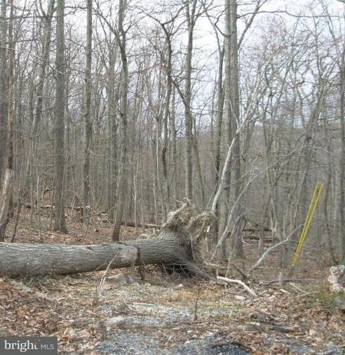 Land for Sale at Ben Davis Dr Linden, Virginia 22642 United States
