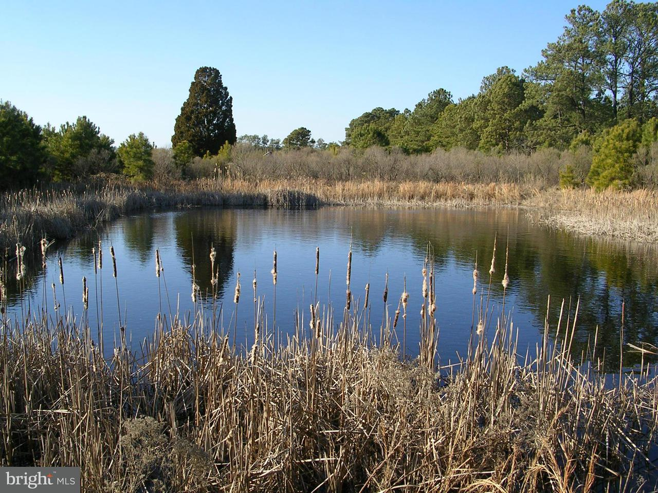 Land for Sale at 2651 Lakesville Rd Church Creek, Maryland 21622 United States