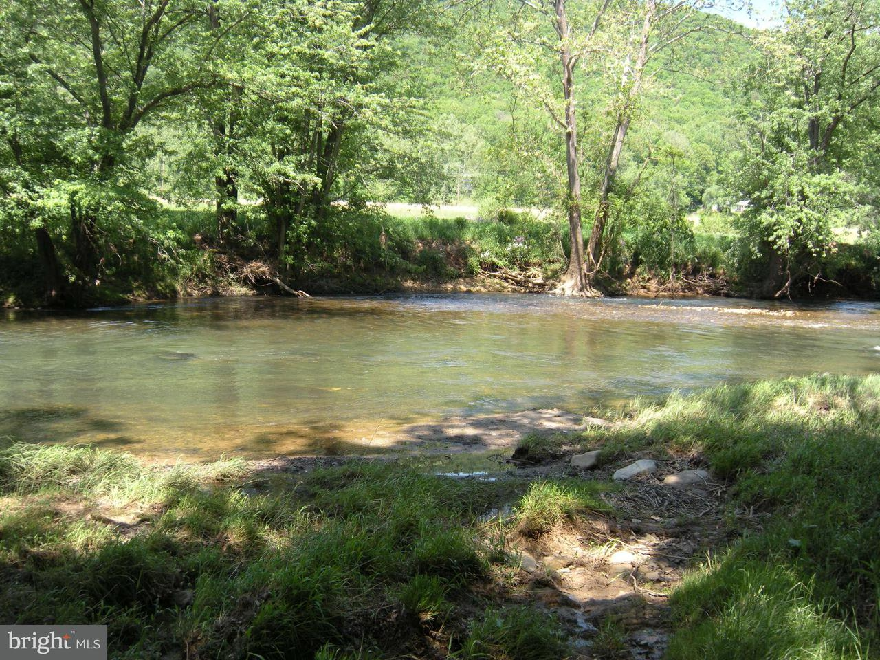 Land for Sale at 114 Mossy Oak Dr Yellow Spring, West Virginia 26865 United States