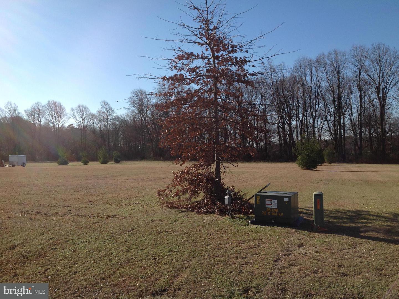 Land for Sale at Solomons Cir Hurlock, Maryland 21643 United States