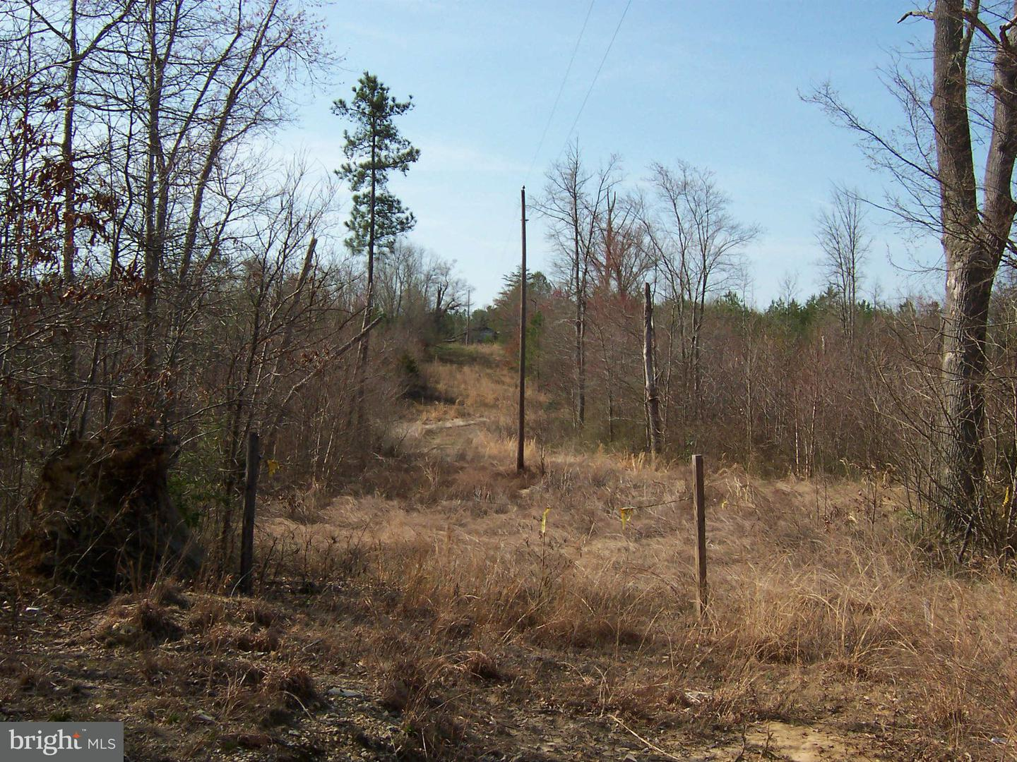 Additional photo for property listing at Mary Lee Dr  Doswell, Virginia 23047 United States