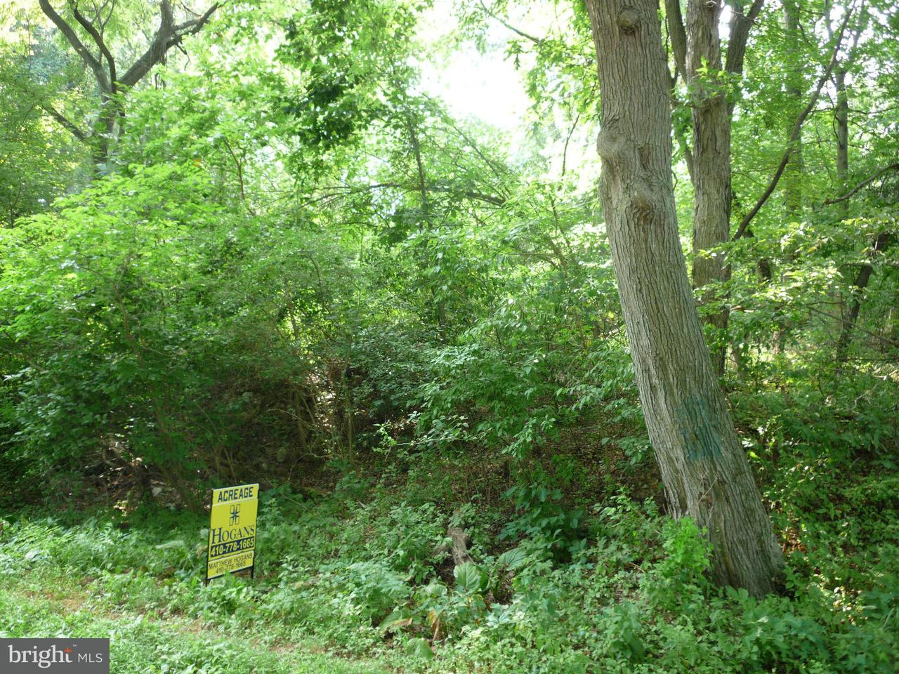 Land for Sale at 329 Flatland Rd Chestertown, Maryland 21620 United States