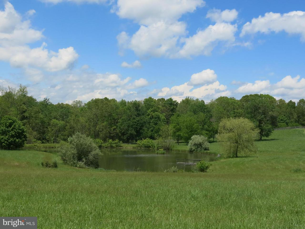 Additional photo for property listing at 1954 North Poes Rd  Flint Hill, Virginia 22627 United States
