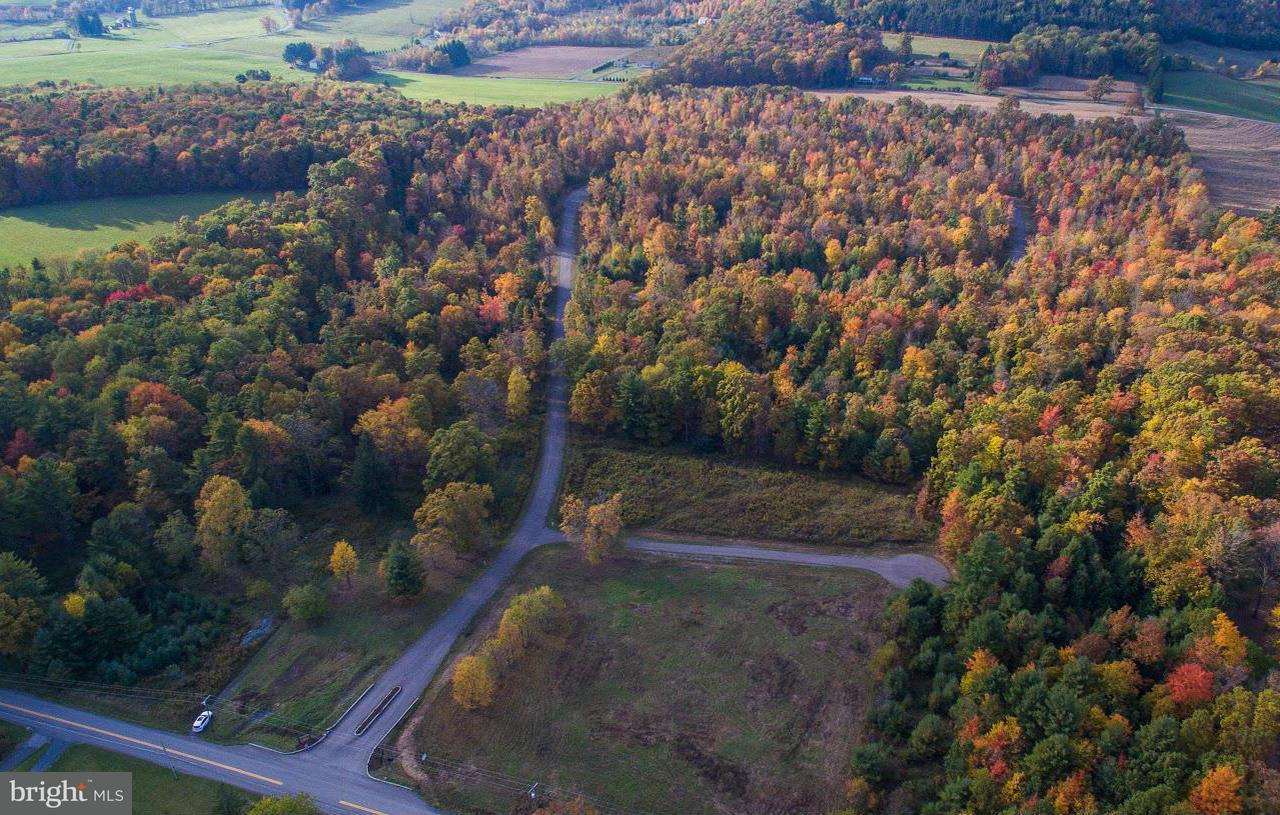 Land for Sale at 3 Raven Ct Oakland, Maryland 21550 United States