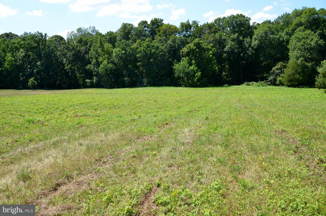 Additional photo for property listing at Montabello Lake Rd  Worton, Maryland 21678 United States