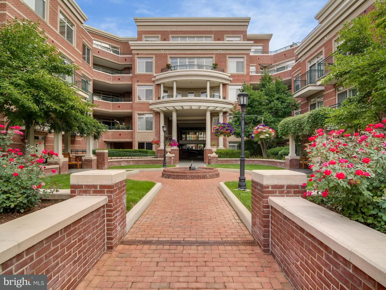 Condominium for Sale at 66 Franklin St #103 66 Franklin St #103 Annapolis, Maryland 21401 United States