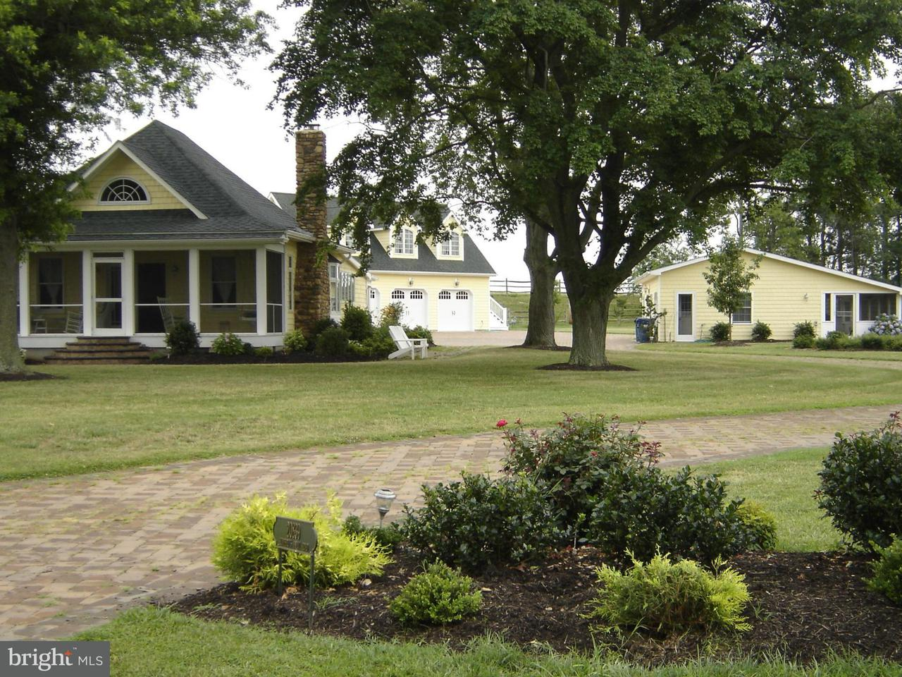 Single Family for Sale at 20839 Humphreys Point Rd Rock Hall, Maryland 21661 United States