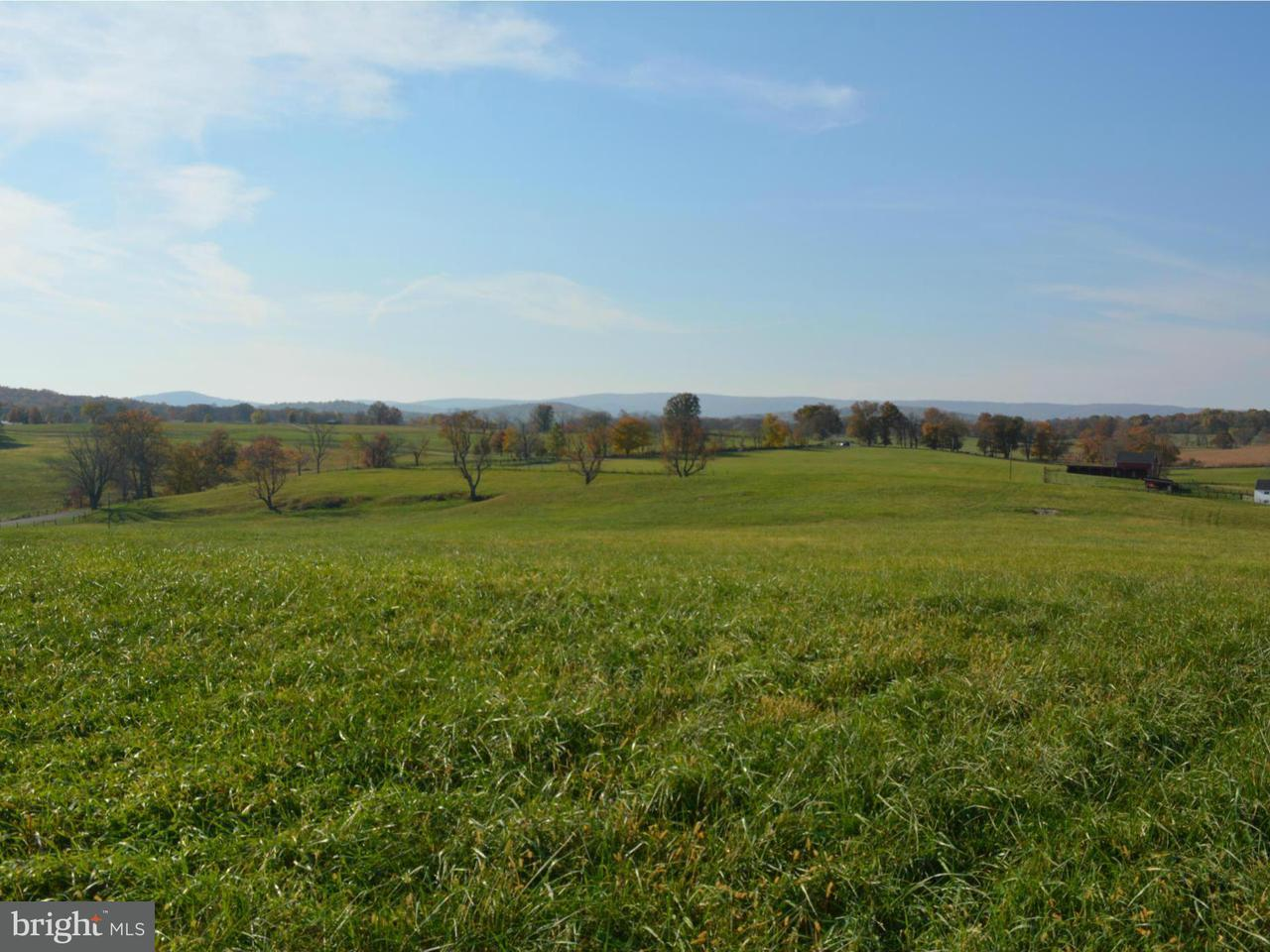 Land for Sale at Rokeby Rd Upperville, Virginia 20184 United States
