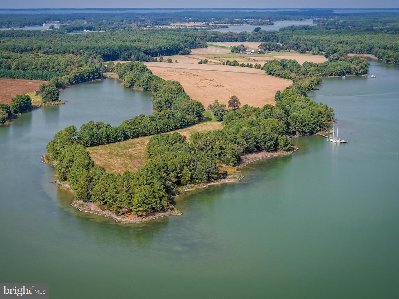 Farm for Sale at 7485 May Port Rd Bozman, Maryland 21612 United States