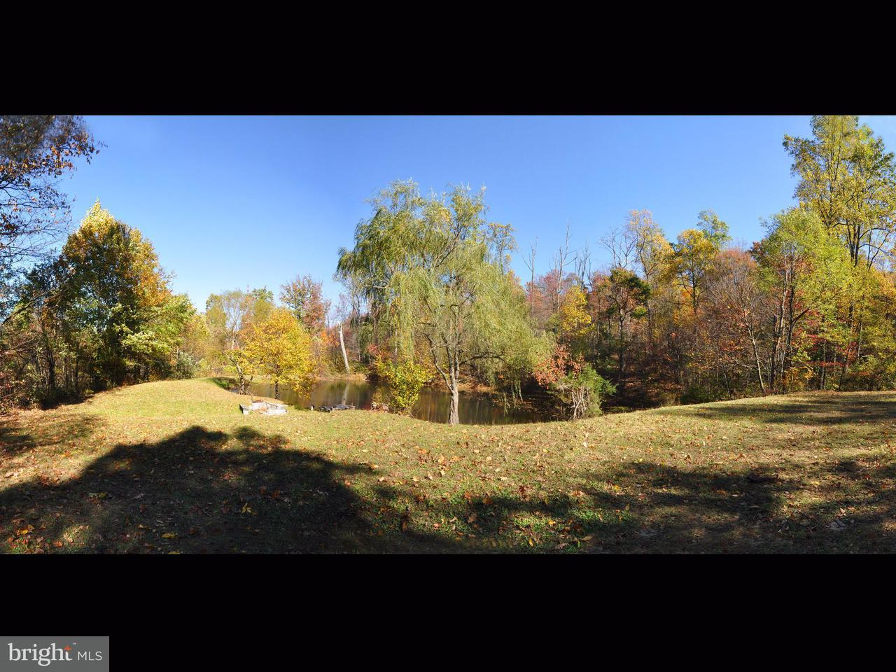 Land for Sale at Back Creek Rd/Bear Ridge Rd Yellow Spring, West Virginia 26865 United States