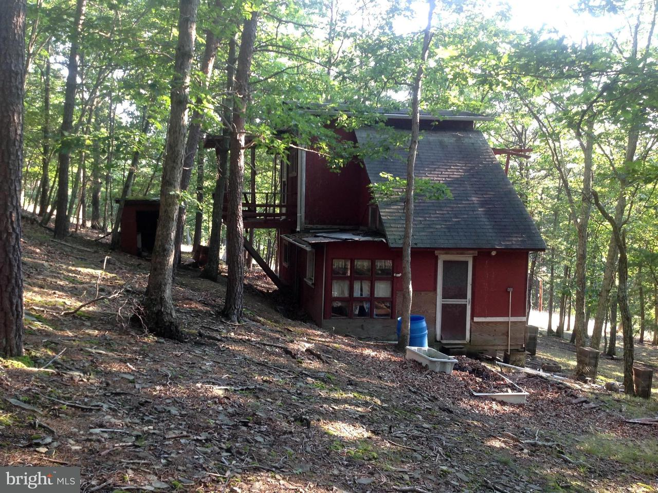 Land for Sale at 13 Thorn Run Rd Lahmansville, West Virginia 26731 United States