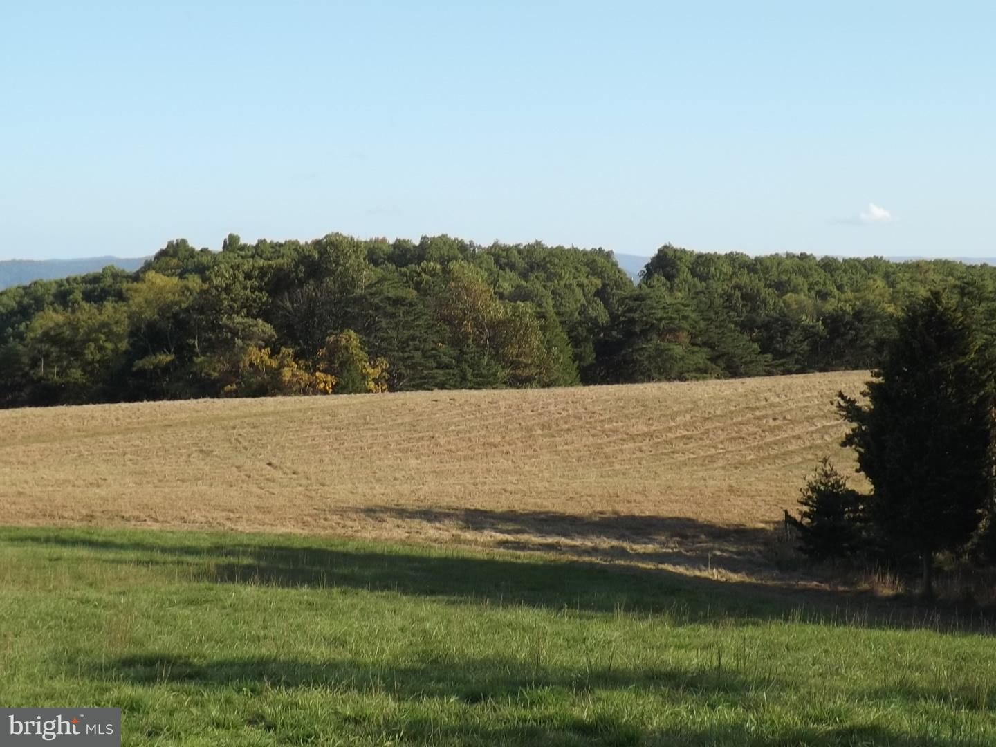 Land for Sale at Push Root Rd Burlington, West Virginia 26710 United States