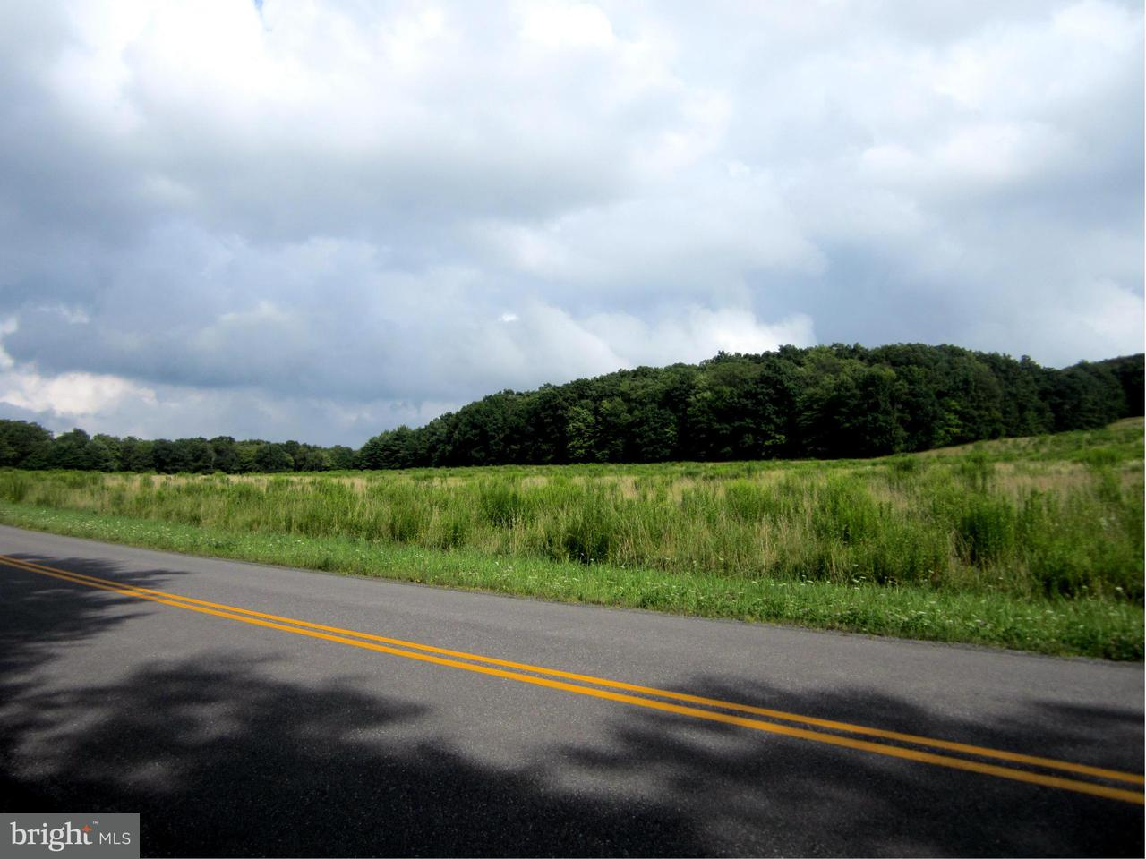 Additional photo for property listing at Steiding Church Rd  Swanton, Maryland 21561 United States