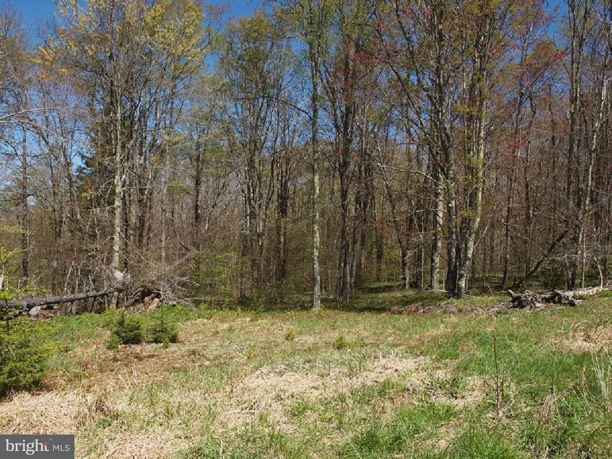 Land for Sale at Spruce Knob Riverton, West Virginia 26814 United States