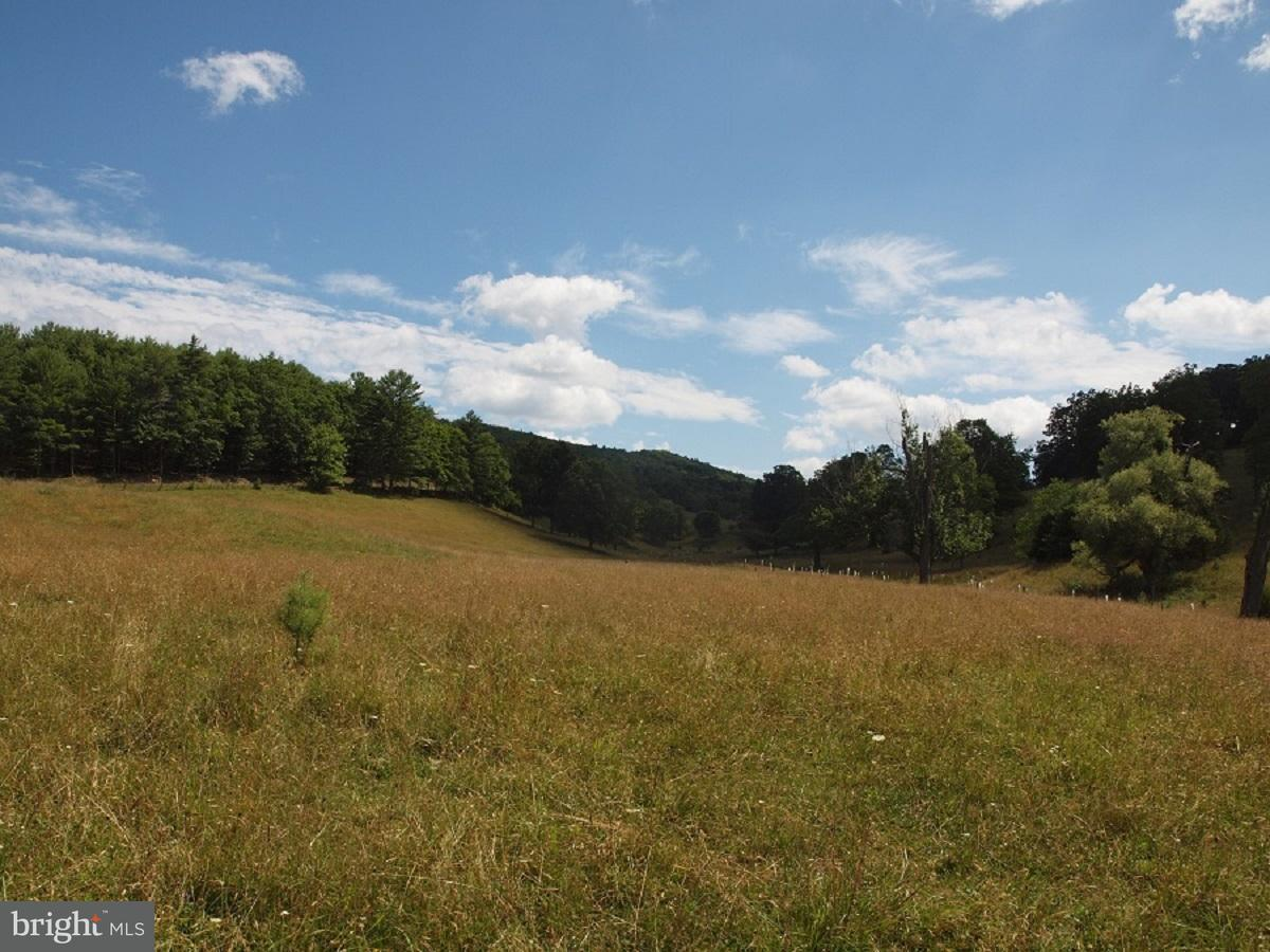 Land for Sale at Dry Run Road Franklin, West Virginia 26807 United States