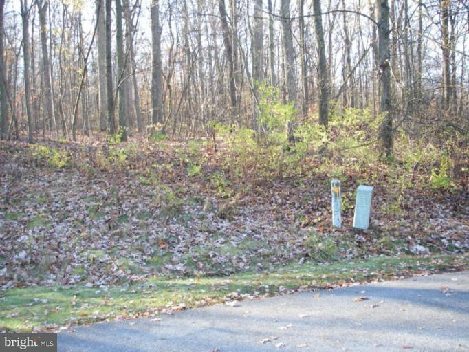 Land for Sale at 11932 Crestwood Cir Waynesboro, Pennsylvania 17268 United States