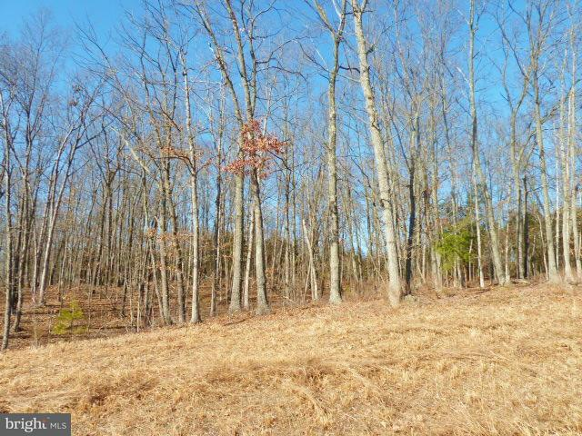 Additional photo for property listing at Lot 38 Comforter Ln  Middletown, Virginia 22645 United States