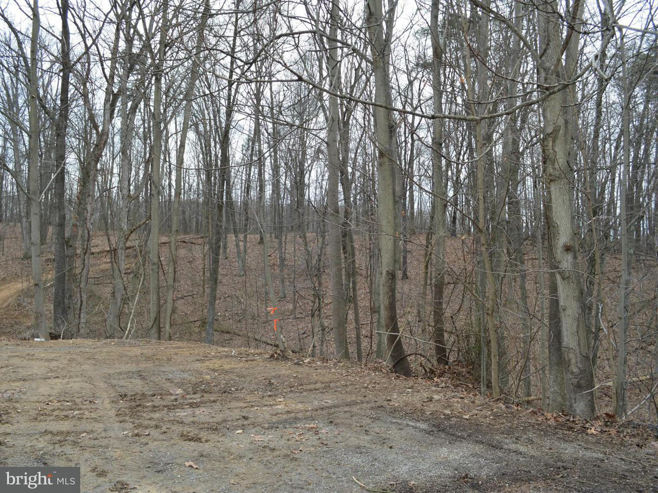 Additional photo for property listing at Creek Rd  Berkeley Springs, West Virginia 25411 United States