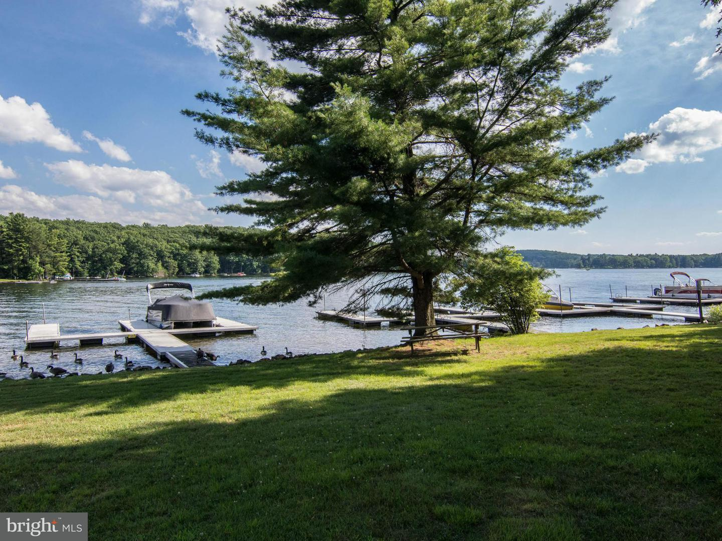Additional photo for property listing at 1852 Glendale Rd  Swanton, Maryland 21561 United States