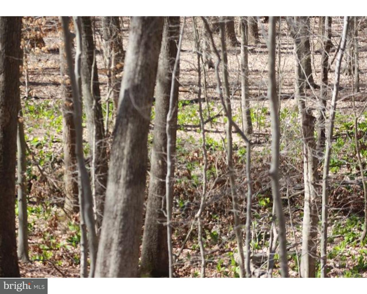 LOT 4 MILL RD, KENNETT SQUARE - Listed at $375,000, KENNETT SQUARE