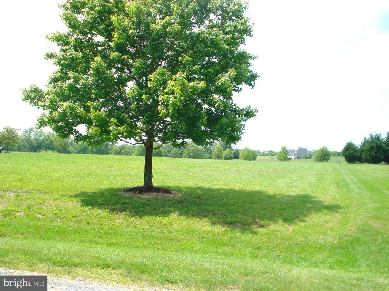 Parson Hill Worton, MD 21678