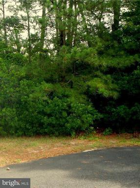 LOT 12 BURRWOOD , MILLSBORO Real Estate