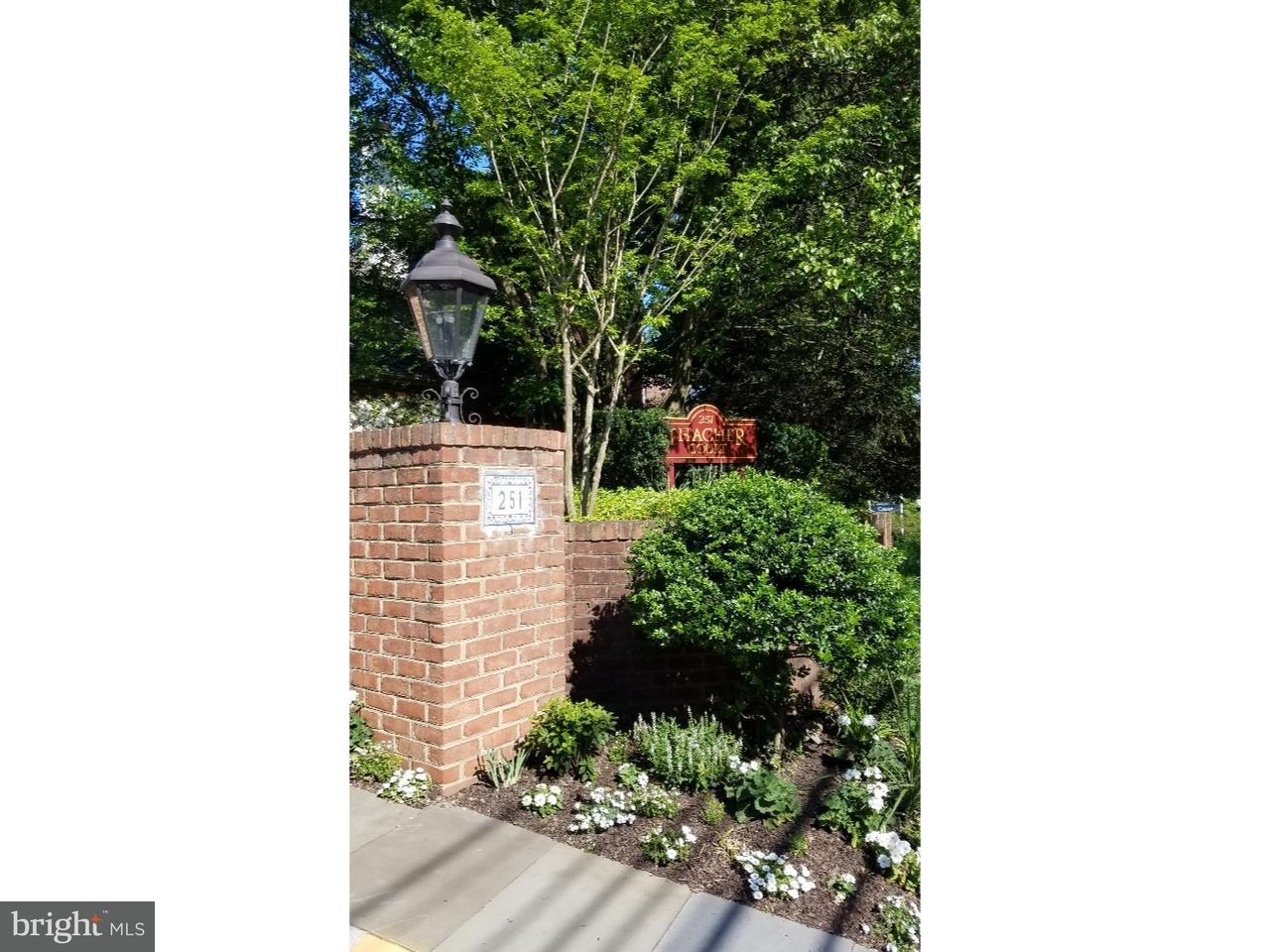 251 W Montgomery Avenue #1 Haverford, PA 19041